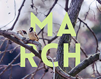March Seasonal Poster
