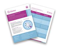 iDeeter - Flyer Design
