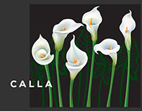 Calla - A nature inspired project.