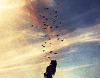We Own The Sky | Photography Series