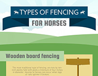 Benefits of Cedar Fence