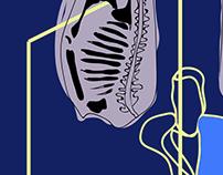 Francis Bacon Inspired Illustration