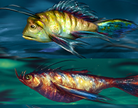 Sketches of fish