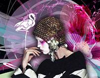 Flamingo — Digital Illustration