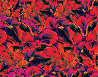 Bonbooze - Flows Ep 2014 (Cover Album)