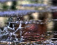 Photo - Rain drops in the water