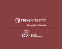Diseño Multimedia - TECNISEGURO