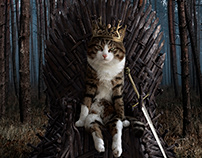 The King who deserves the Iron Throne !