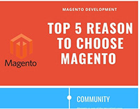 TOP 5 REASON TO CHOOSE – INFOGRAPHICS
