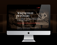 HORSE RACING - Logo and web design for fun