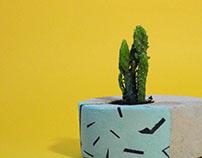 MALIZ concrete planters