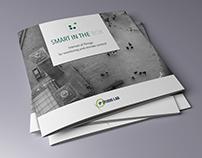 Smart In The Box brochure design