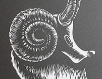 Serigrafía Cabra