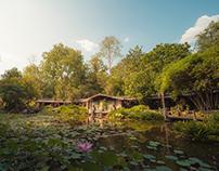 Environment·Thailand