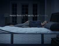 Serta / The All-New Perfect Sleeper