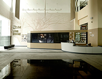 SIM Gallery