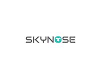 Logo Design for Skynose