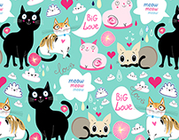 Wallpapers funny cats
