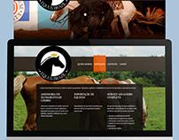 Equusbrazil: Desenvolvimento de Site