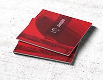 Red Zeppelin logo brandbook