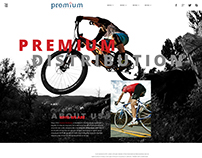 Premium distribution homepage demo 1