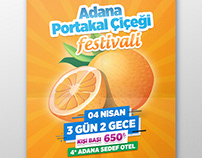Adana Portakal Festivali
