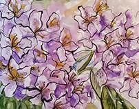 Floral Sketchbook Studies