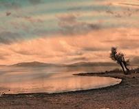 A walk at the lake_