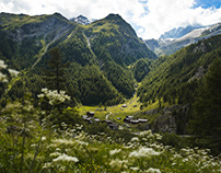 Suisse I