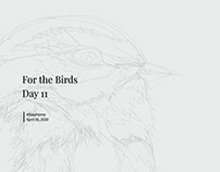 For The Birds: Day 11