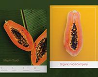 Organic Food Brochure Layout