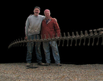 Deinosuchus , 30 foot Crocodilian Skeleton