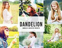 Free Dandelion Mobile & Desktop Lightroom Presets