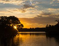 Prospect Park Sunset