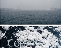 5 diptychs about first snow