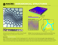 3d Printing: Nacre: Designing Hierarchical Structures