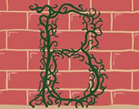 B Vines GIF