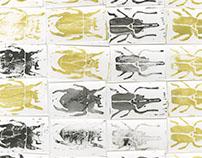 Lino-cut prints