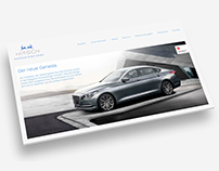 Layout Website dealership hirsch, Mega-Light Poster