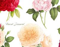Composition de fleurs aquarellées