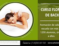 curso flores de bach|http://carlosleston.es/