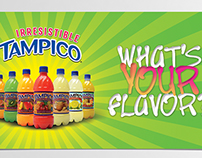 Irresistible Tampico - What's Your Flavor?