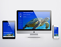 Horizontal Storytelling Website