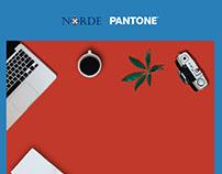 Norde + Pantone