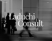 Laduchi Consult website design