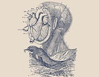 Paisaje Anatómico