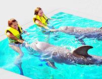 3D swimming