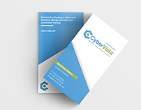 CyberVista Business Cards