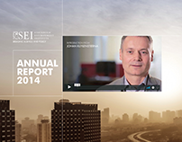 SEI Annual Report 2014