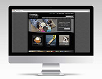 Stainmaster Website Redesign